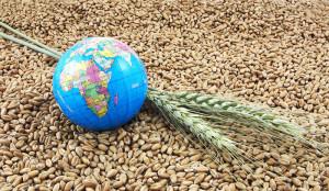 svetovni-dan-hrane